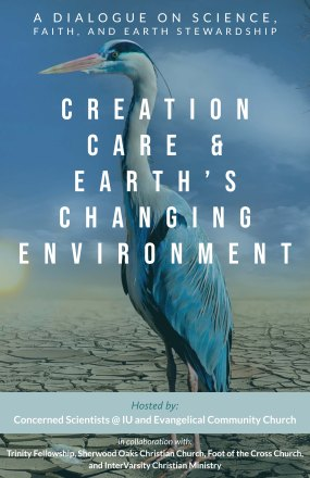 creation care(2)